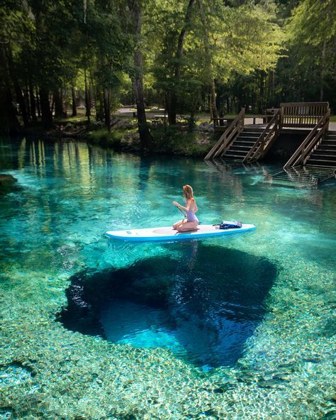 The Best Freshwater Springs and Other Can't-Miss Destinations in Florida! — Jess Wandering