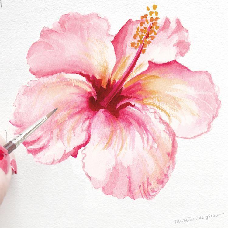 In Bloom Tropical Hibiscus A Watercolor Life Watercolor Flowers Paintings Floral Watercolor Hibiscus Flower Drawing