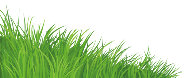 grass element png clipart picture | Деревья | pinterest | grasses