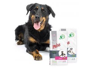 Prins introduceert ProCare Protection - Een 100% natuurlijke geperste brokvoeding voor (middel)grote honden met unieke ingrediënten - Prins Petfoods