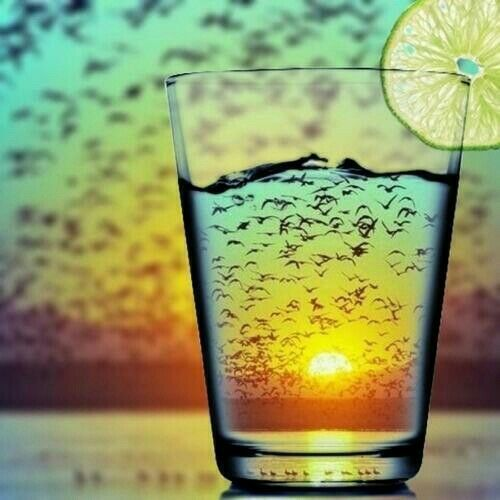 Beach, Sunset, Birds, and a Cocktail. All of my very favorite things. | La Beℓℓe ℳystère