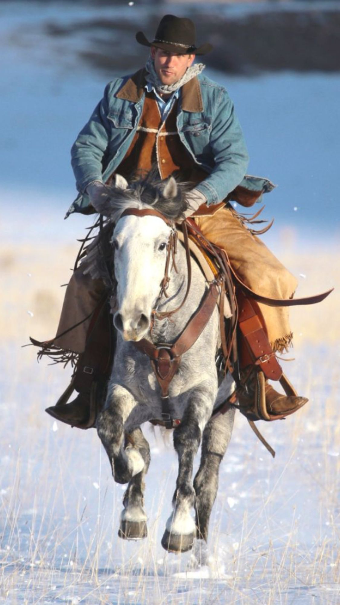 Ride M Cowboy