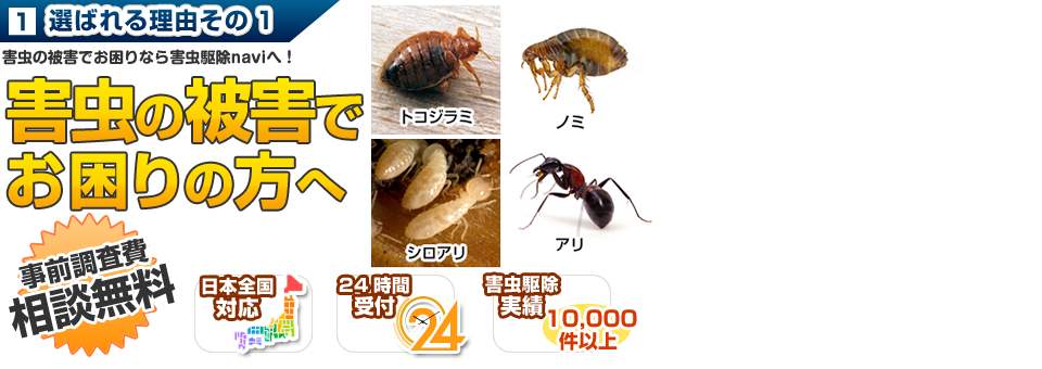 選ばれる理由その1 業界最安値に挑戦 害虫にお困りなら害虫駆除navi