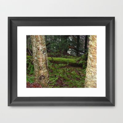 West Virginia Series by Sarah Shanely Photography $31.00
