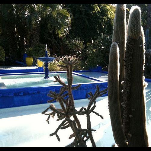 Jardin Yves Saint Laurent Marrakech: LLG Travels: Yves Saint Laurent's Jardin De Majorelle