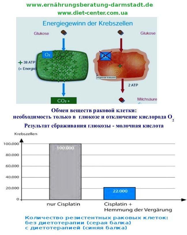 Ketogene Ernährung bei Krebs