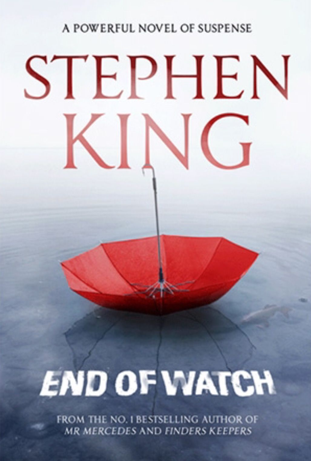 The World Of Stephen King 1996 2016 Stephen King Books Stephen King King Book