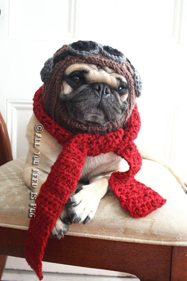 The Red Baron Dog Hat And Scarf Set Aviator Hat With Goggles
