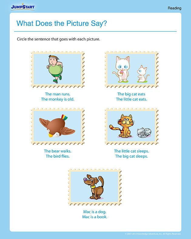 photograph regarding Free Printable Reading Worksheets for 1st Grade named What Does the Imagine Say Cost-free Printable Examining Worksheet
