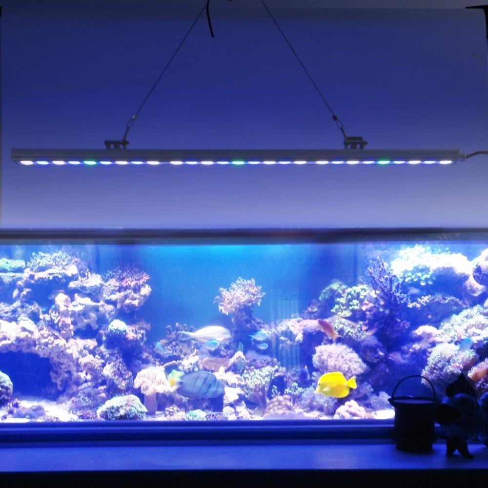 watch more here pcslot best sale w ip led aquarium