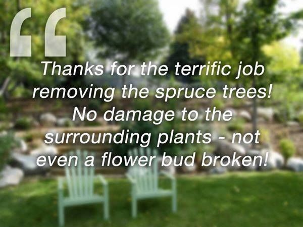 Are you looking for a trusted landscaping team for the spring? Read our testimonials at http://sawyers.ca/