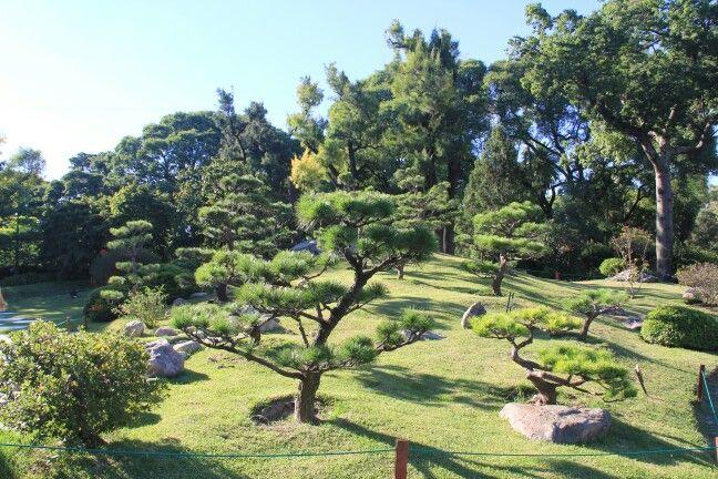 Bosque de Bonsai, Jardin Japones, Buenos Aires, Argentina