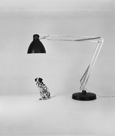 Gaetano Pesce Moloch Floor Lamp 1970 71 Bracciodiferro Srl Genova Ge Italy Vitra Design