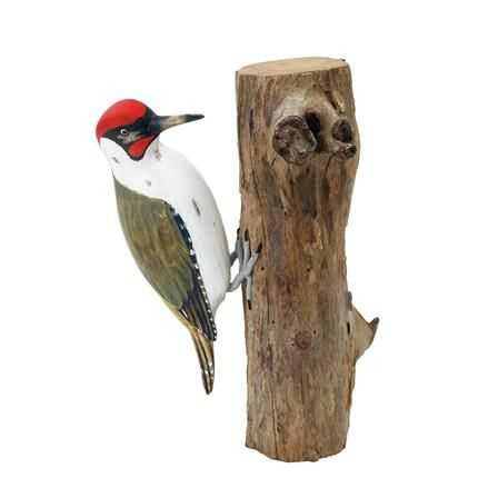 P jaro carpintero sobre tronco de madera de archipelago - Carpintero de madera ...