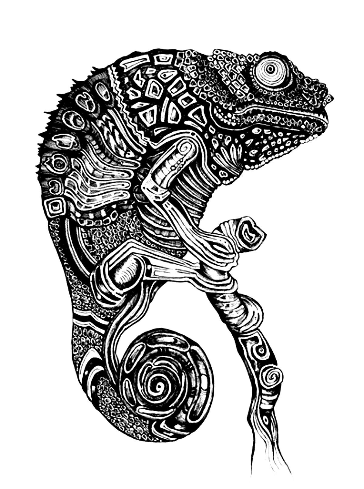 Free coloring page coloring adult difficult cameleon very - Animal dessin ...