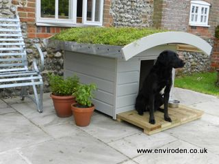 Dogden Omg The Most Eco Friendly Dog House Ever I Love This And