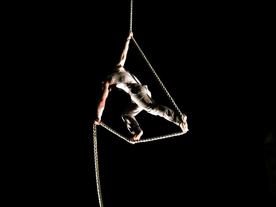 Ебут в цирке