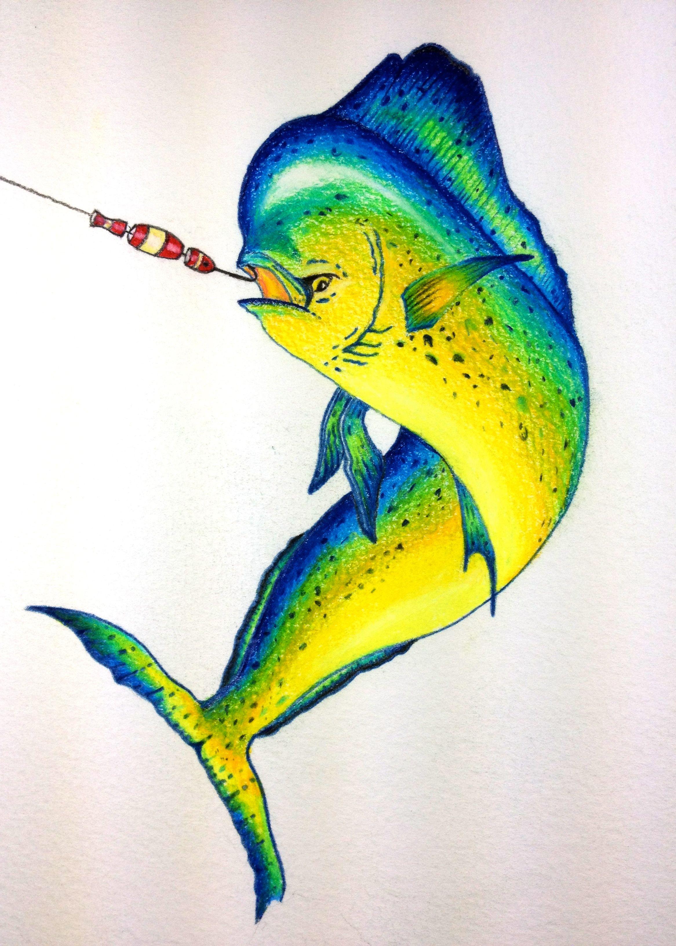 fish mahi mahi hooked up colored pencil artist david feldkamp columbus ohio colored. Black Bedroom Furniture Sets. Home Design Ideas