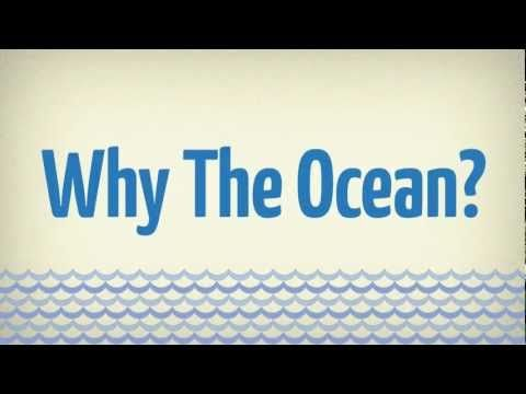 Why the Ocean? #infographic