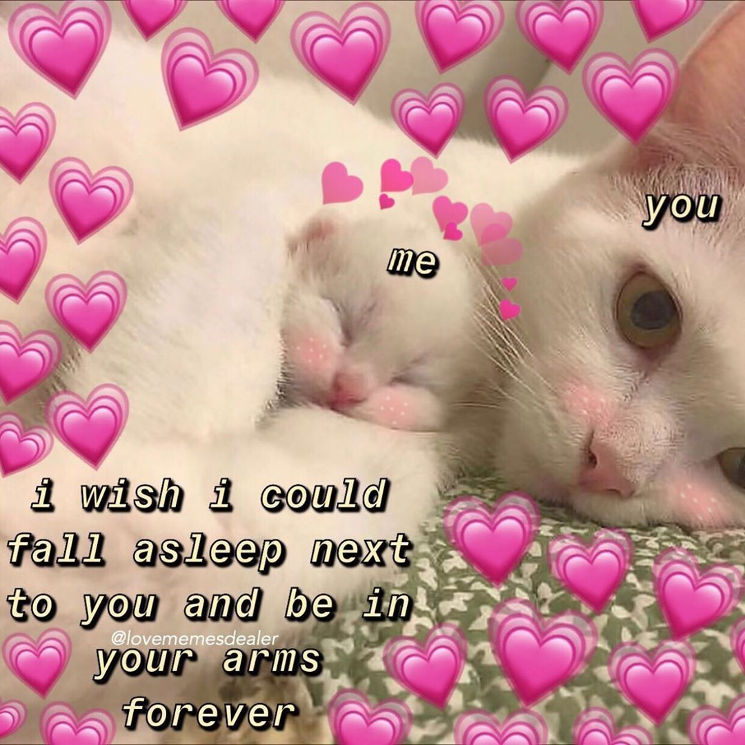 Hello Thanks For Following On Instagram I Hit 1000 Soon And I Just Wanna Say This Account Funny Couples Memes Cute Couple Memes Love Memes For Him