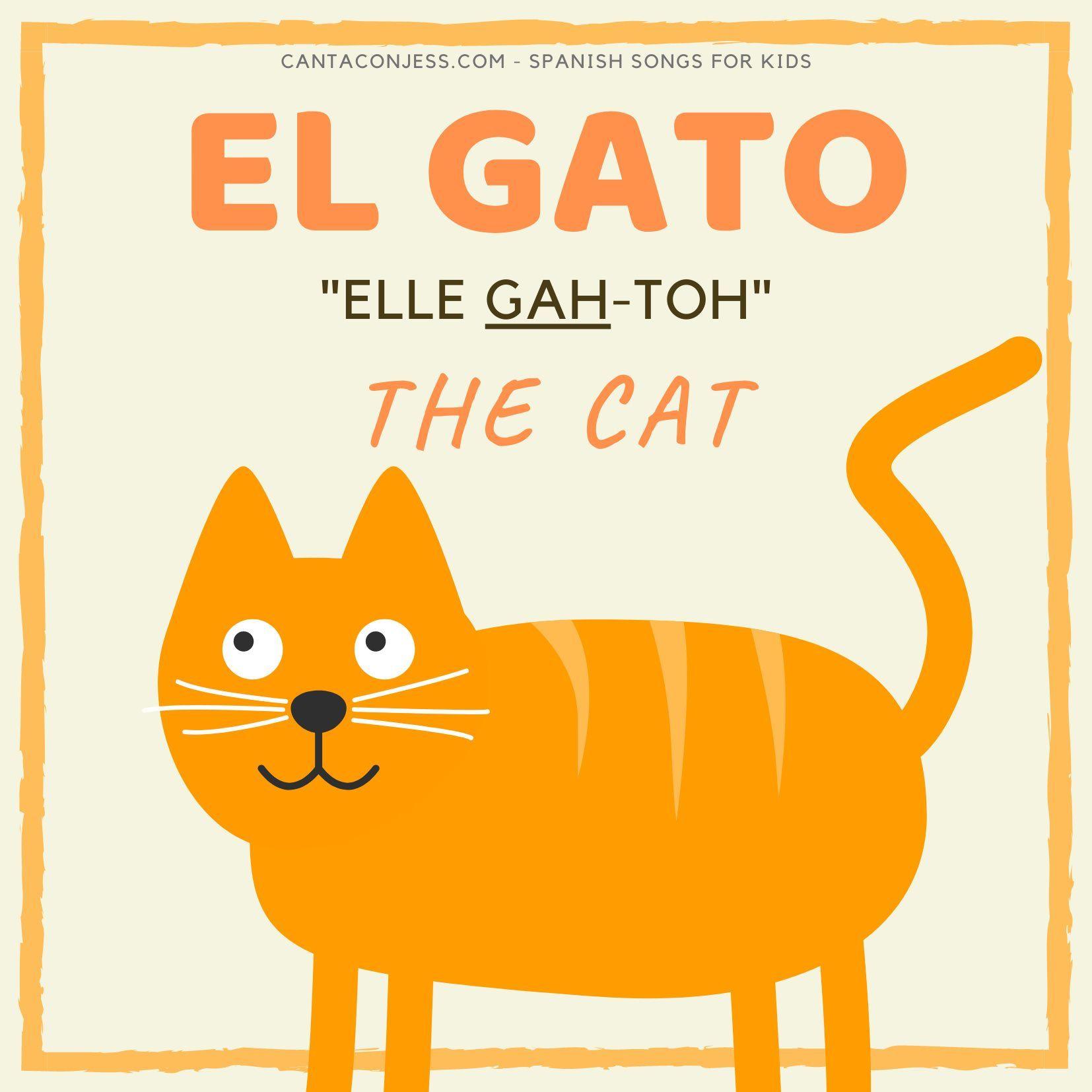 Animals In Spanish Gato Cat Spanish Songs Kids Songs Kids