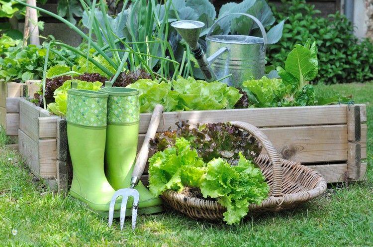 Garten Pflege Kleines Hochbeet Gemusebeet Holz Gummistiefel Salat