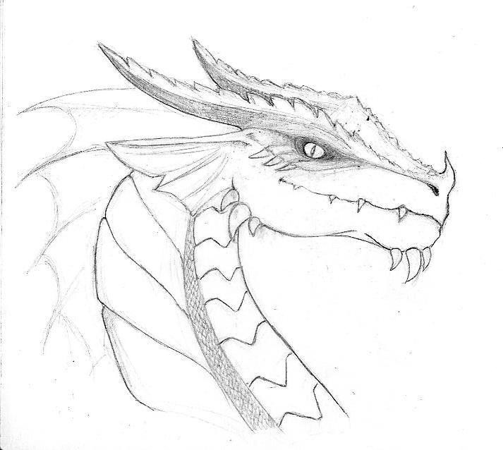 статье драконы картинки карандашом не сложные видно многочисленным фото