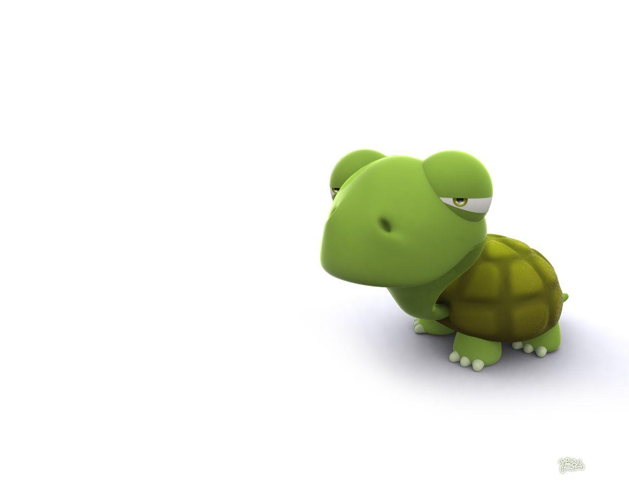 Turtle Cartoon Turtle Funny Wallpaper Cartoon Wallpaper