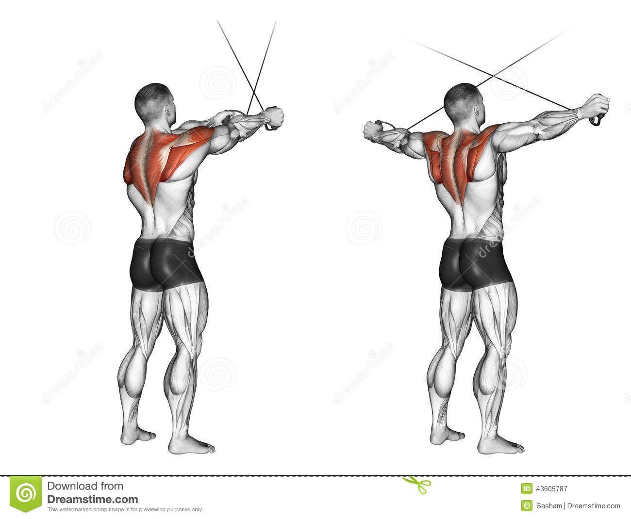 Bench Dip Spieren