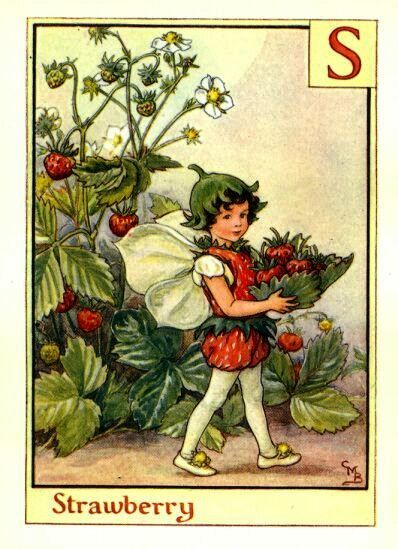 Strawberry Fairy Print or any of the original vintage Cicely Mary Barker