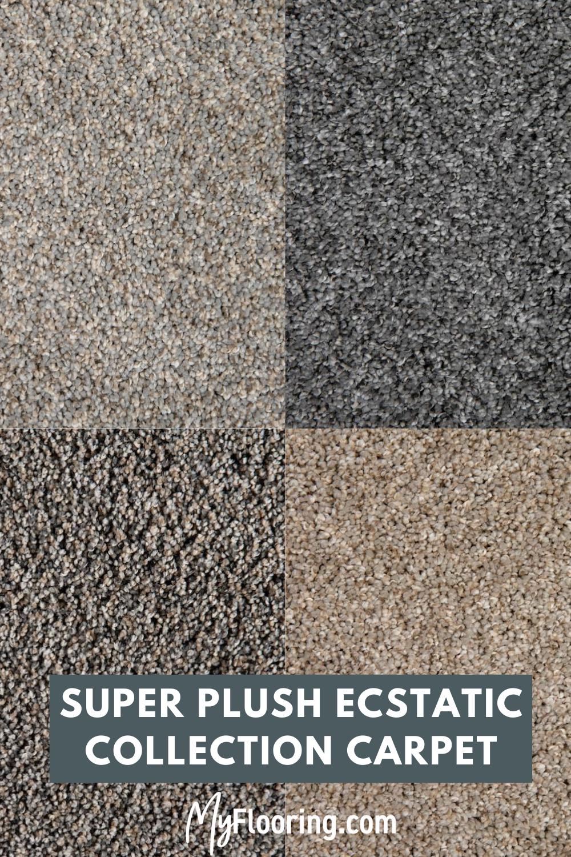 World's Best Premium Carpet + Installation Ecstatic