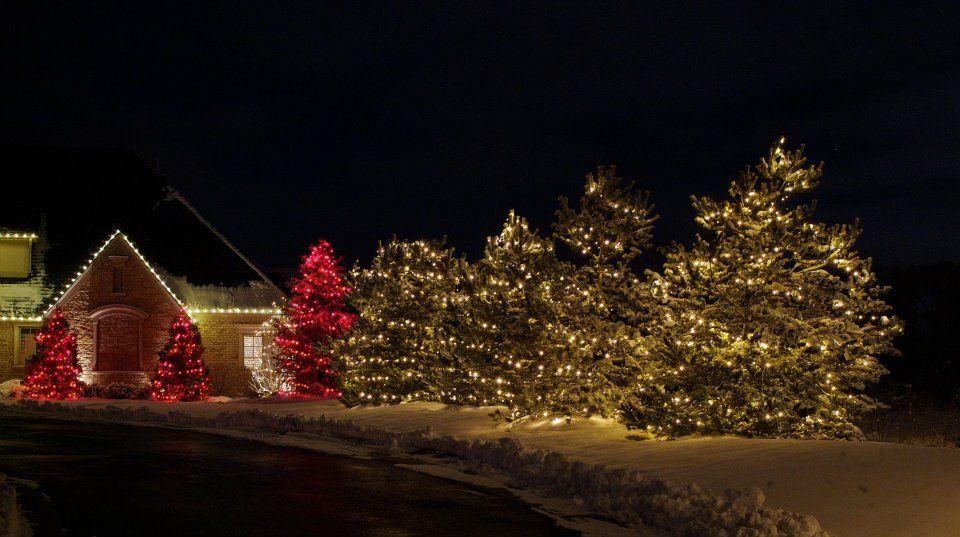 is the christmas light business profitable httpwwwwehangchristmaslightscomblogchristmas light business profitable