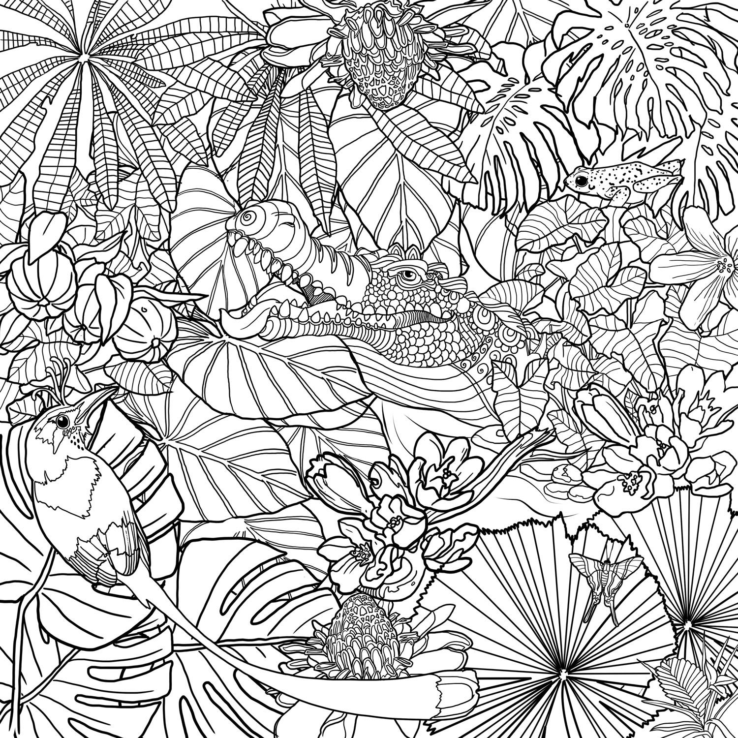 The top 10 Ideas About Jungle Coloring Pages for Adults ...
