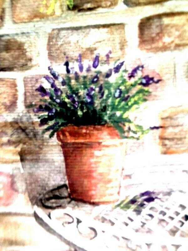 Watercolour by sue