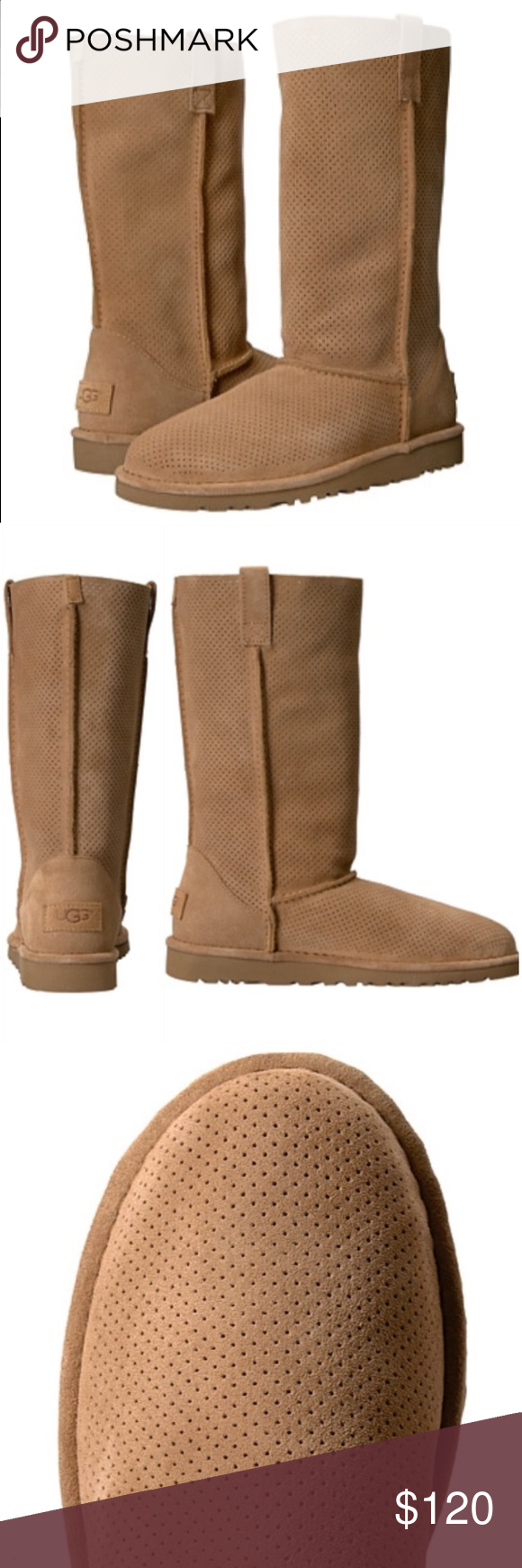 0b0f167a9a5 UGG Shoes | New Ugg Classic Perforated Tall Unlined Boots | Color ...