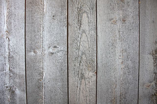 Photo of Tapet