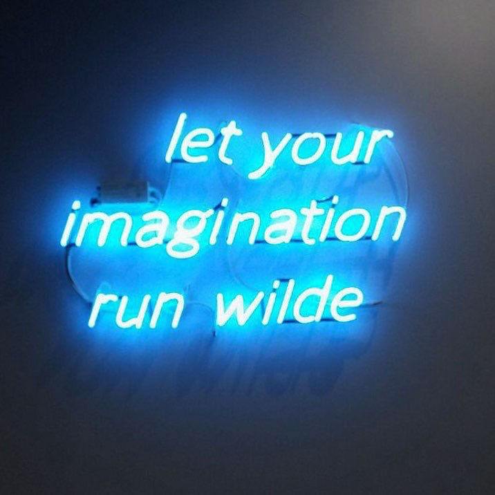 LET YOUR IMAGINATION RUN WILDE