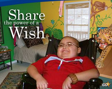 17 Best images about Make-A-Wish Foundation on Pinterest ...
