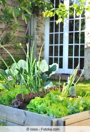 Hochbeet Richtig Befullen Gartenjahr Pinterest Blumenbeet
