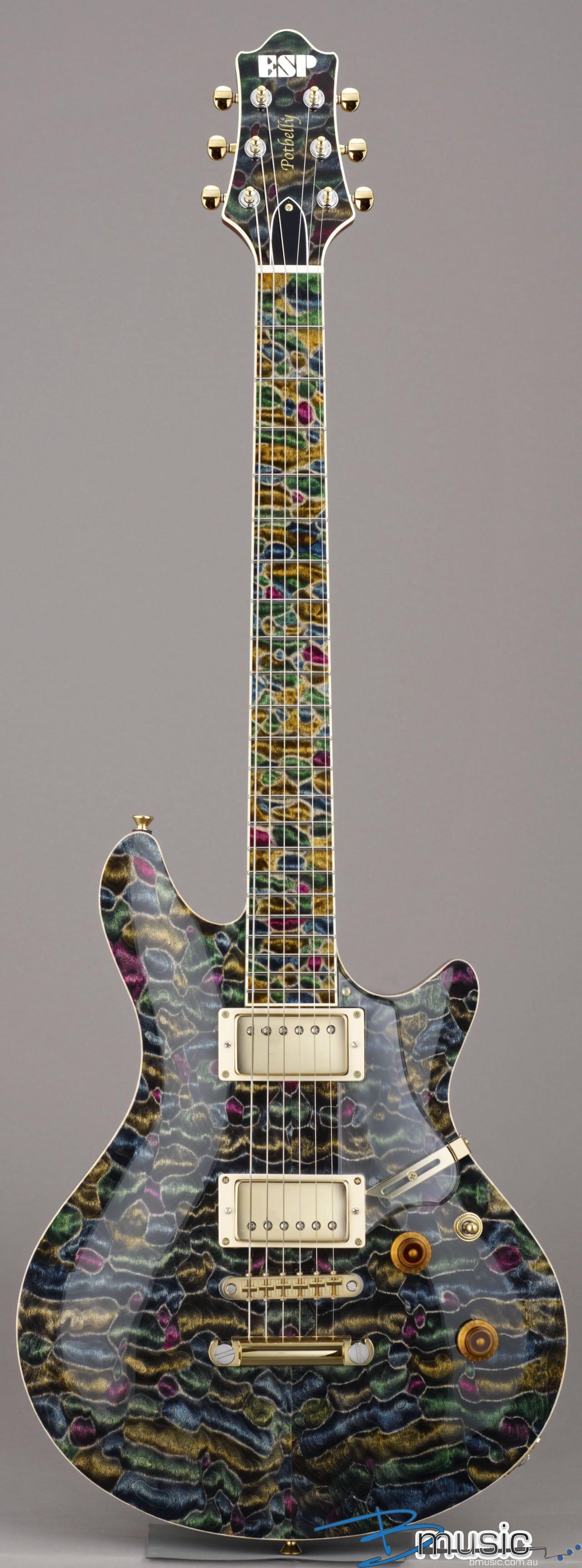 Esp potbellyqm mosaic guitar instrument music