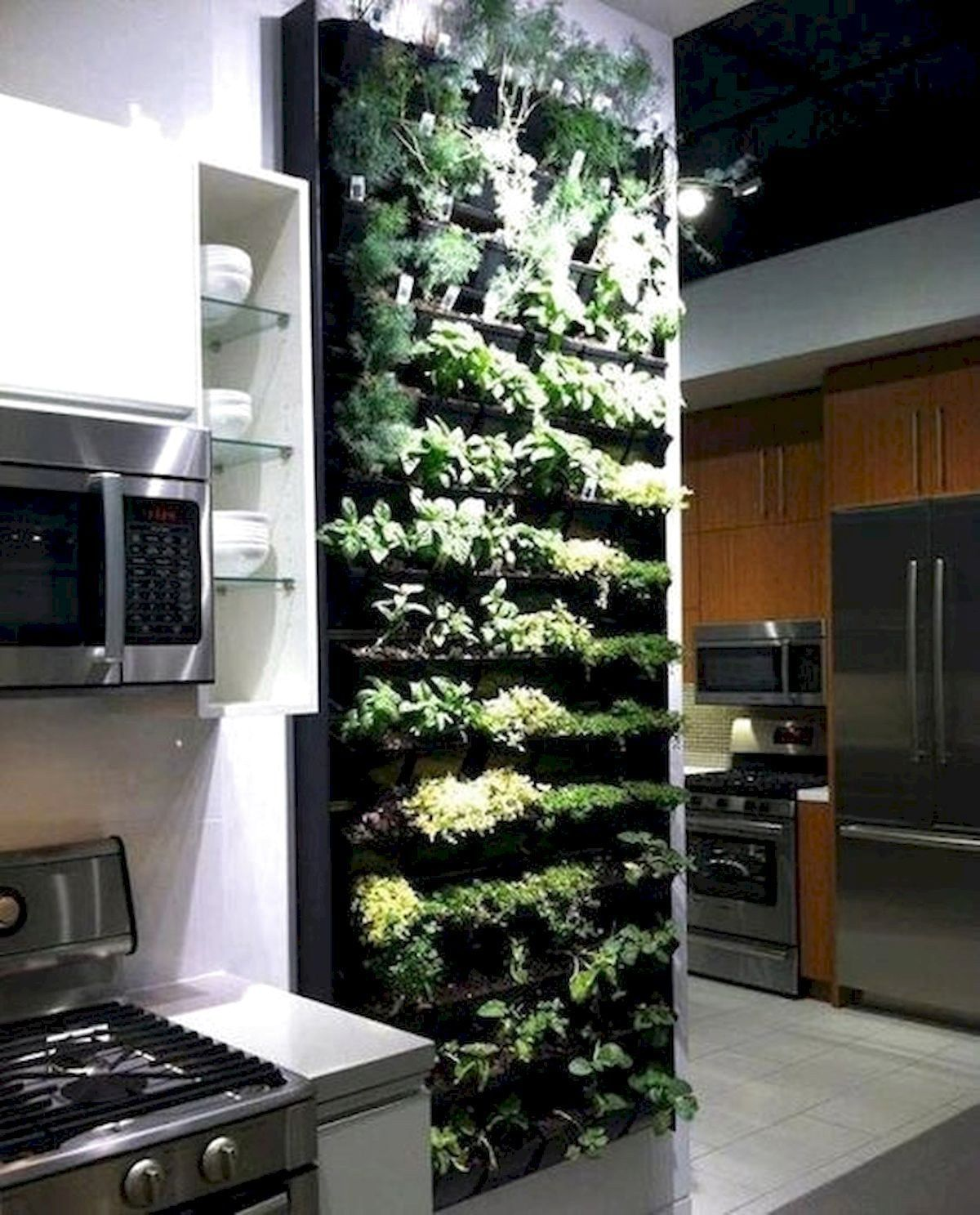 Amazing Indoor Garden For Apartment Design Ideas And Remodel