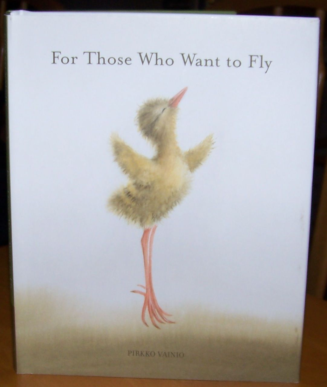 Inspirational Read - For Those Who Want To Fly