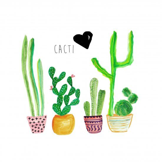 Checkout Different Ways In Which The Cacti Trend Is Being Used From Interior Design To Fashion Download F Cactus Backgrounds Cute Computer Backgrounds Cactus