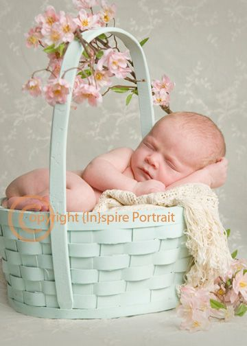 Newborn portrait in an easter basket with pink flowers dogwood newborn portrait in an easter basket with pink flowers dogwood negle Choice Image