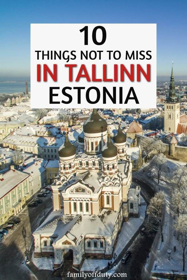 The best things to do in Tallinn in winter months (including Christmas time!)