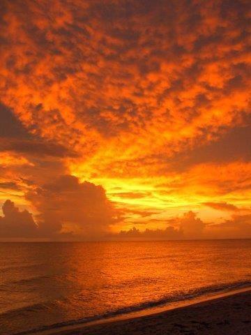 Colorful Photos from Exclusive Manasota Key Florida ...