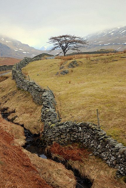 Wiggly Wall Stone Walls Pinterest Lake District Lakes And Fences