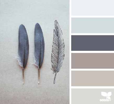 Feathered Tones