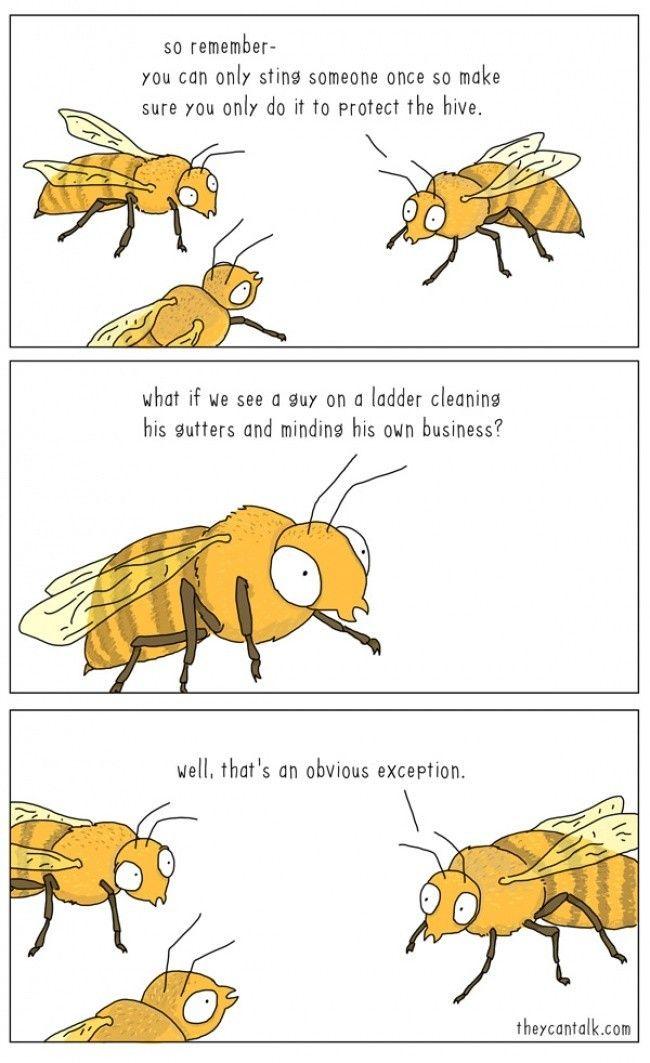 Bees misunderstood.