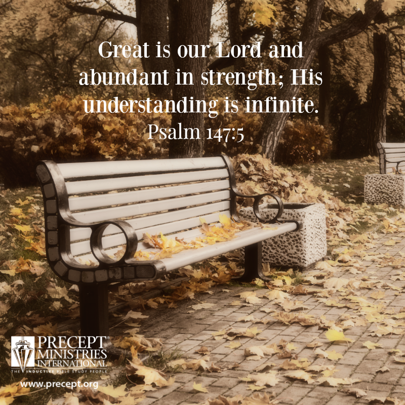 Psalm 147:5...He understands all and forgives fervently graciously.